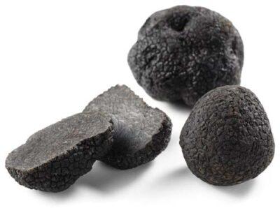 nero pregiato - tartufo nero di Acqualagna