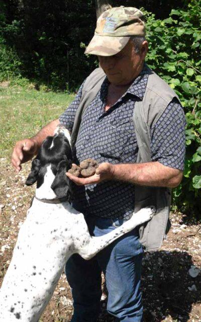 addestramento cani da tartufo ad Acqualagna